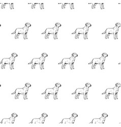 hand drawn background with dog labrador vector image