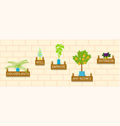 horizontal banner template with houseplants vector image