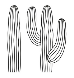 line art black and white mexican cactus vector image