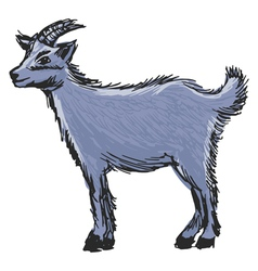 little goat vector image