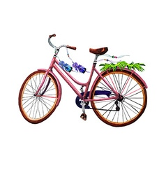 Bike leaves and feathers vector image vector image