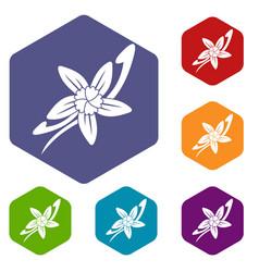 Vanilla sticks with a flower icons set hexagon vector