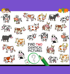 Find two identical cows educational activity vector
