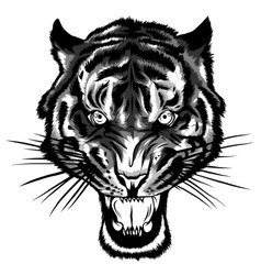 Monochromatic tiger anger of vector