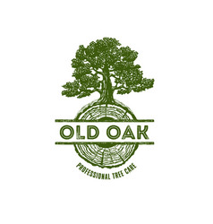 Old oak professional arborist tree care service vector