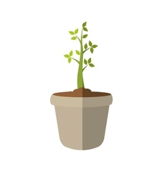 Plant and pot icon Nature design graphic vector