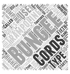 Types of Bungee Jumping Word Cloud Concept vector