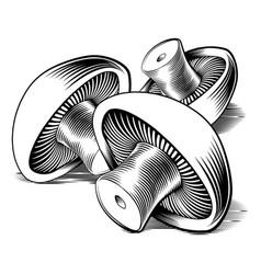 Vintage retro woodcut mushrooms vector