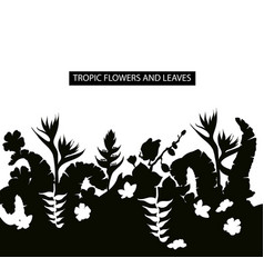 tropical leaves and flowers silhouette border vector image