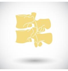 Anatomy spine icon vector