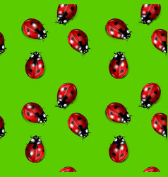 Seamless background with ladybirds vector