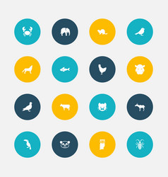 set of 16 editable zoo icons includes symbols vector image