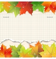 Torn paper sheet and autumn maple leaves vector image