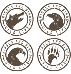 Vintage grunge labels with animals and birds vector