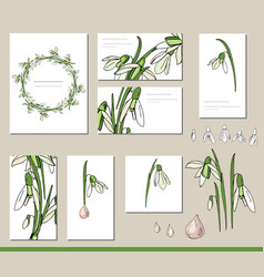 snowdrop set with visitcards and greeting vector image vector image