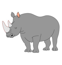 adult rhinoceros on white background vector image
