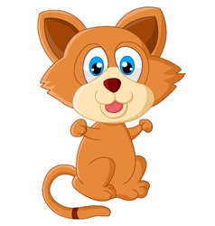 Baby cat cartoon vector image