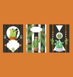 Cactus banners houseplant vector
