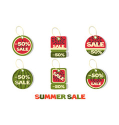 collection style watermelons summer sale tags vector image