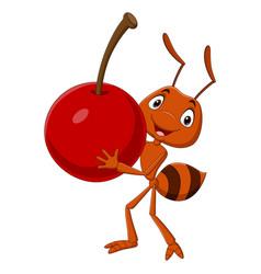 Cute ant cartoon carrying a cherry vector