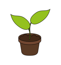 little plant seeding ecological icon vector image