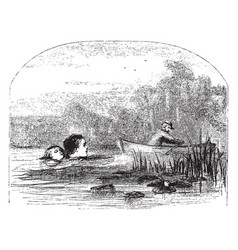 Man canoeing children swimming vintage vector