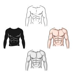 Muscular torso icon in cartoonblack style vector