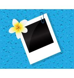 Photo of the flower and drops vector image