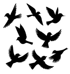 Set flying birds silhouettes vector