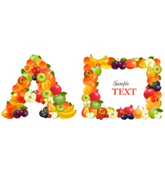 frame made from fruit vector image vector image