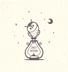 owl and lantern vector image vector image