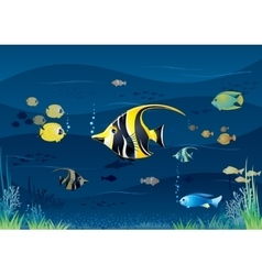 Underwater Background Cartoon vector image