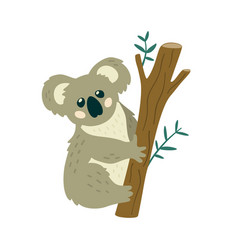 Cute koala bear sitting on the tree creative kids vector