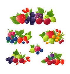 fresh summer berries strawberry blackberry vector image