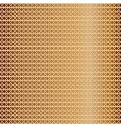 pattern of golden mesh vector image