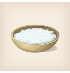 Sea salt flakes in a bowl vector image