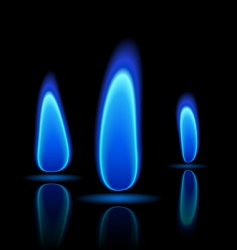 gas flame vector image vector image