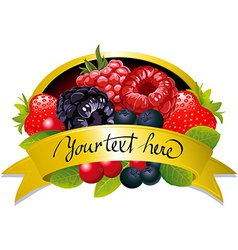 label with berries vector image