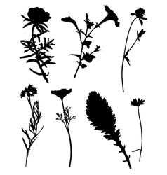 Collection of silhouettes of flowers vector
