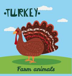 Cute turkey farm animal character farm animals vector