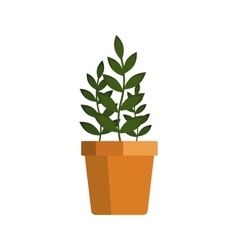 Flower icon logo in pot nature spring plant vector