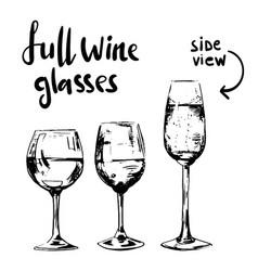 full different wine glasses vector image