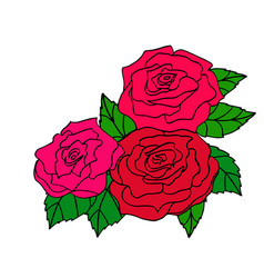 red roses for decoration of greeting cards vector image