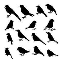 Set birds silhouettes vector