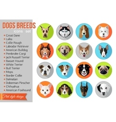 Set of flat popular breeds of dogs icons vector