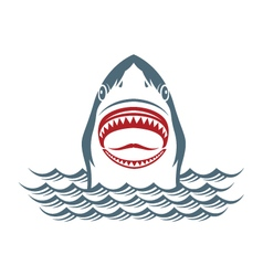 shark on waves vector image