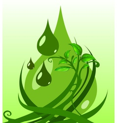 Green leaves with drops vector image