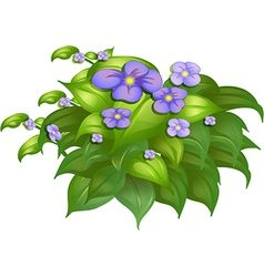 A flower plant vector image vector image