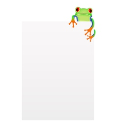 Red eyed tree frog background vector image vector image
