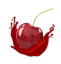 Cherry berry inside splashing juice on white vector